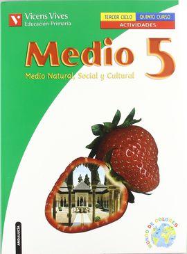 MEDIO 5 ANDALUCIA ACTIVIDADES