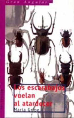 GA. 31 LOS ESCARABAJOS VUELAN AL ATARDEC