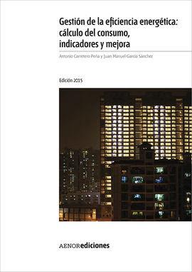 GESTIÓN DE LA EFICIENCIA ENERGÉTICA: CÁLCULO DEL CONSUMO, INDICADORES Y MEJORA.