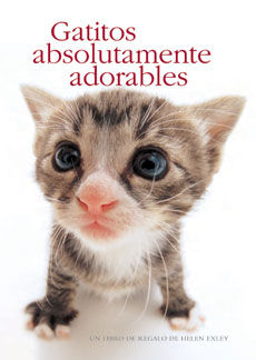 GATITOS ABSOLUTAMENTE ADORABLES