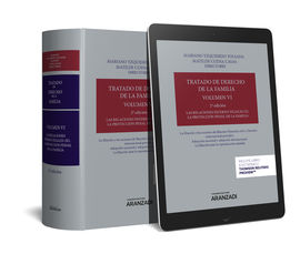 TRATADO DE DERECHO DE LA FAMILIA (VOLUMEN VI) (PAPEL + E-BOOK)