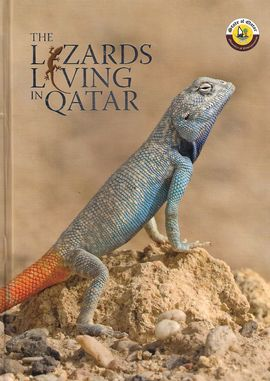 THE LIZARDS LIVING IN QATAR